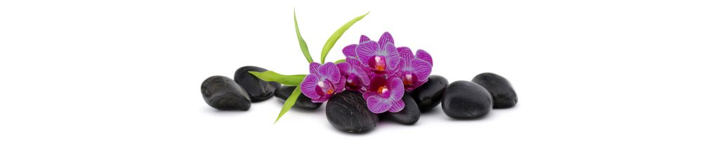 Acacia Studios - pebbles and orchids image